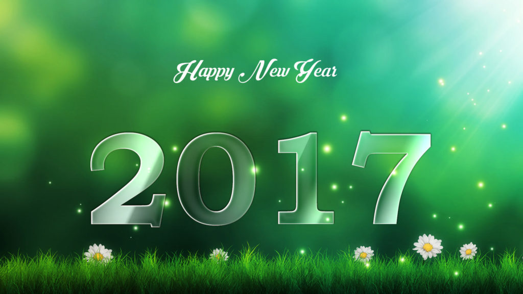 Herby Organics wishing you all a very happy new year 2017
