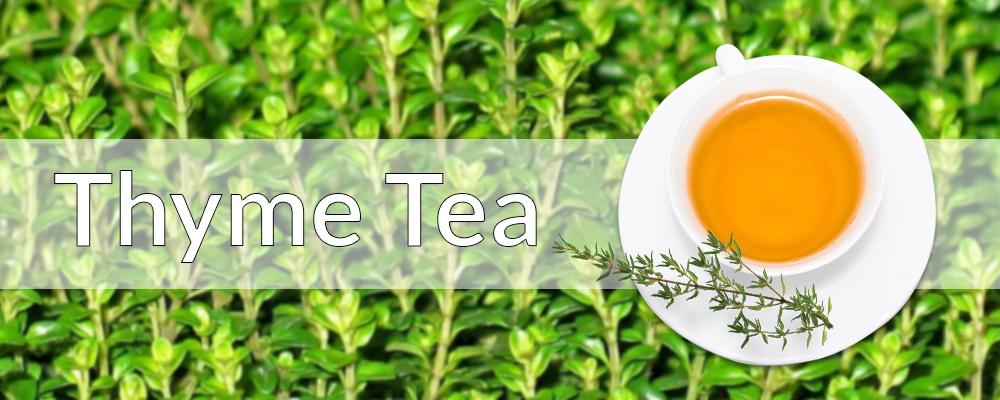Thyme Tea a Pure Healing Tonic