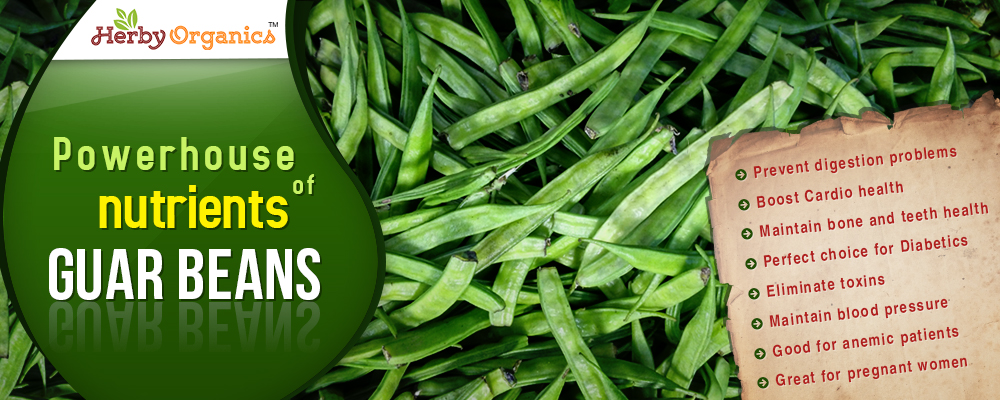Powerhouse of nutrients – Guar Beans