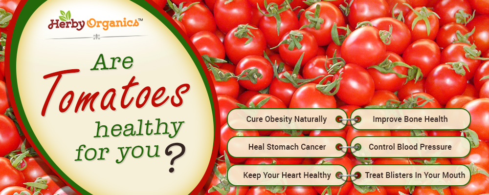 Are Tomatoes healthy for you? Let's find out