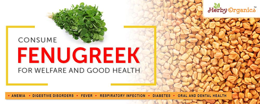Fenugreek for good health