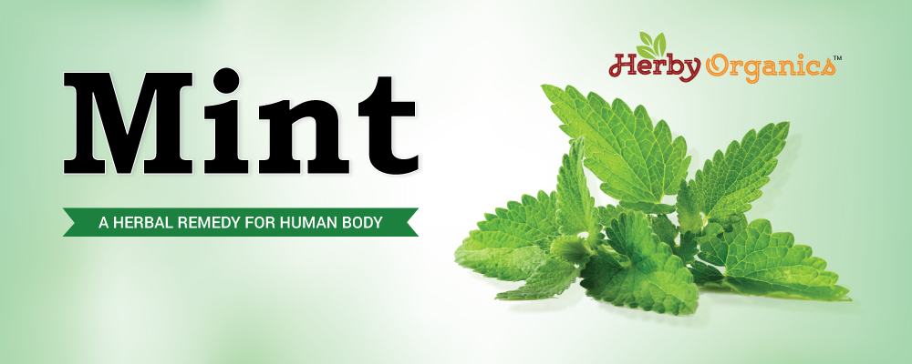 Why Mint should be your friend?