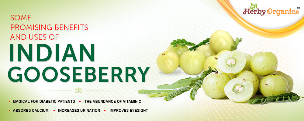 For Long health life try Indian Gooseberry