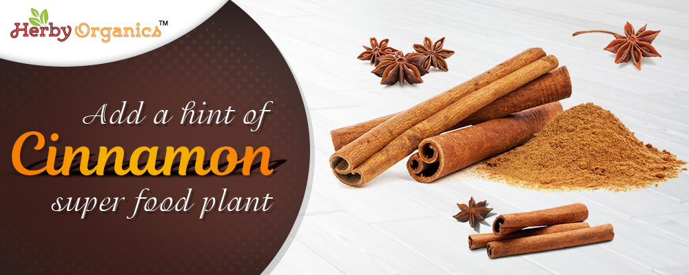 Add health to your life with Cinnamon