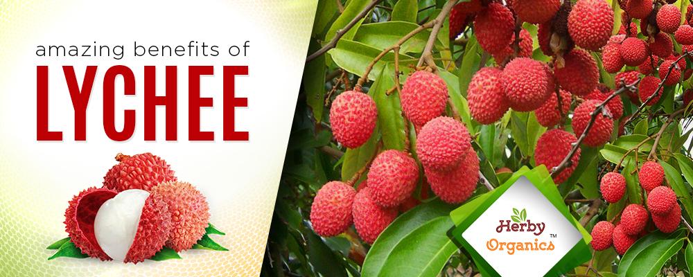Enjoy the Super Fruit Lychee