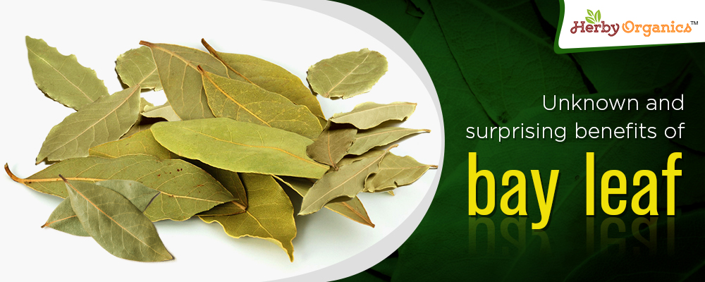 Unknown & surprising benefits of Bay leaf