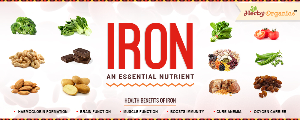 Iron: essential nutrient for Life