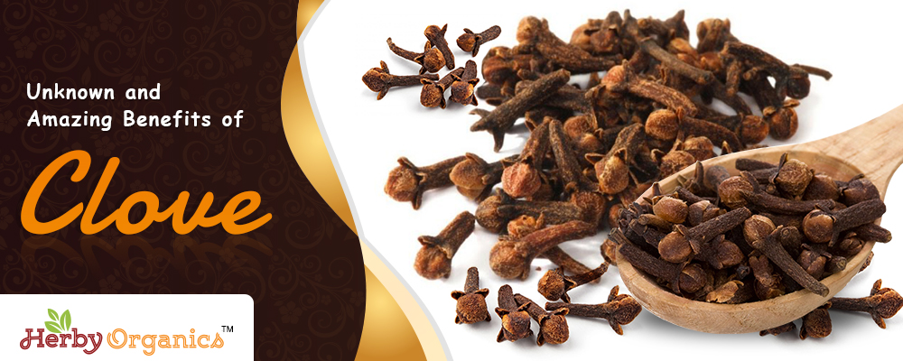 Unknown and Amazing Benefits of Clove