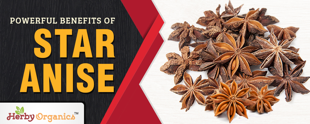 Powerful Benefits of Star Anise
